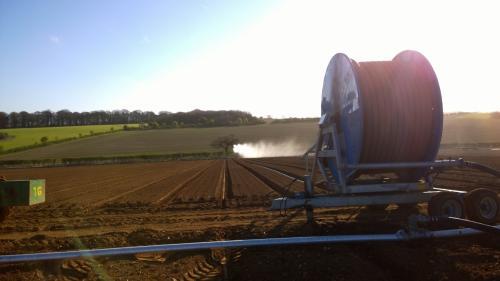 11.1 Irrigation